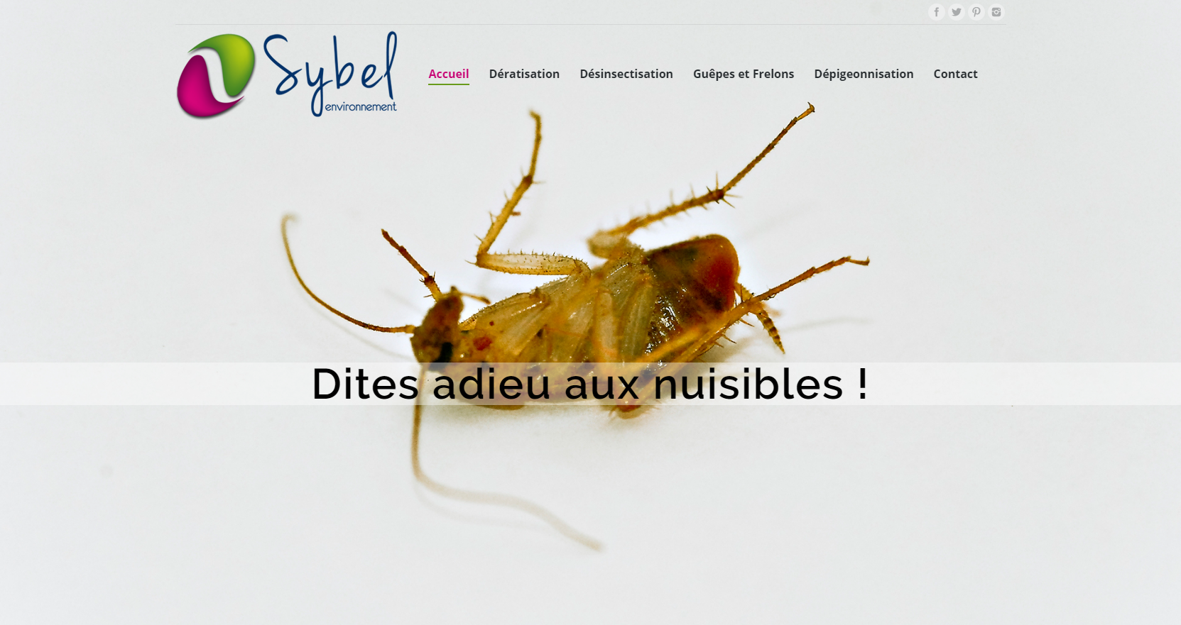 Création site internet Sybel lutte nuisibles
